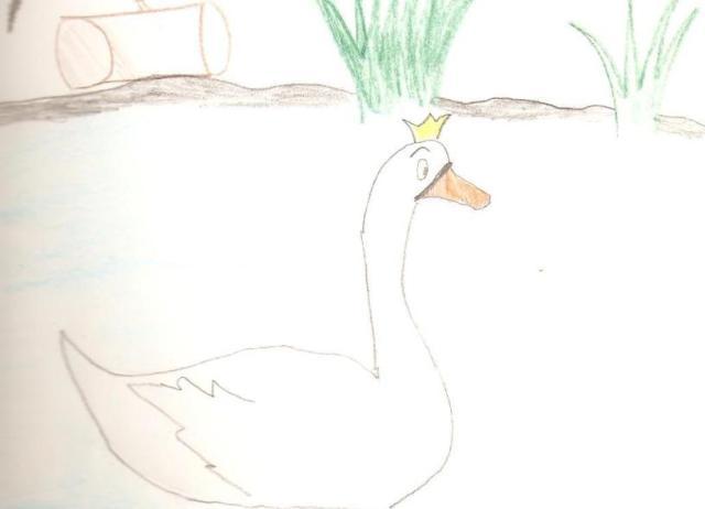 Ta risba je nekaj posebnega predvsem zaradi pohvalnega odnosa avtorice do narave. Sama se ne bi nikoli spomnila na to, da lahko na pereč problem onesnaževanja voda opozarjaš tudi preko spominskih knjig...